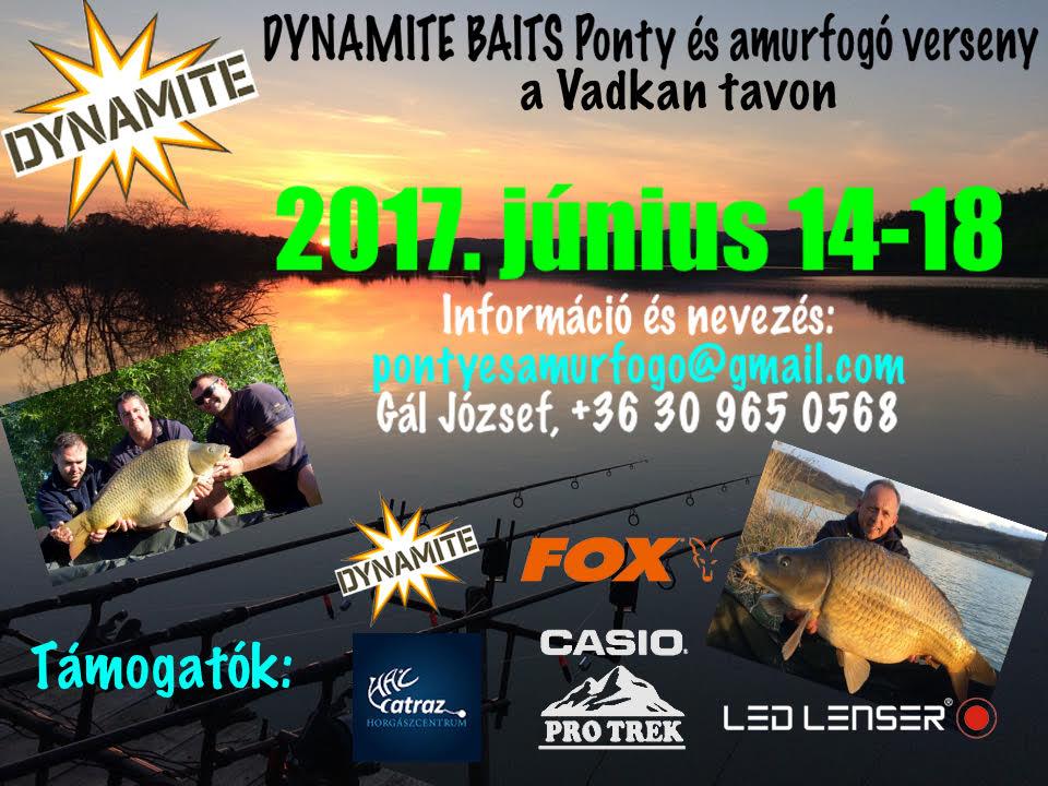 Dynamite Baits ponty és amúrfogó verseny