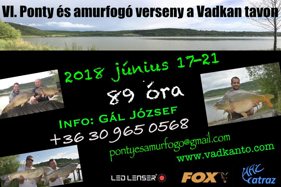 VI. Ponty és amurfogó verseny a Vadkan Tavon